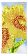 Shining Sunflowers Beach Sheet