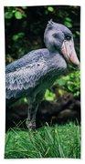 Shoebill Stork Side Portrait Beach Towel