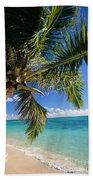 Shoreline Waters Beach Towel