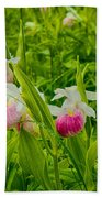 Showy Lady's Slipper Orchids Beach Towel