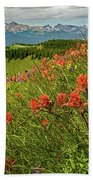 Shrine Pass Wildflowers Beach Towel