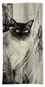 Siamese Cat Posing In Black And White Beach Towel
