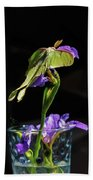 Siberian Iris And Luna Moth Beach Towel