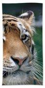 Siberian Tiger 2 Beach Towel