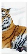 Siberian Tiger Amur Tiger Beach Towel