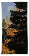 Sierra Autumn Moonset Beach Towel