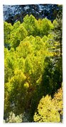 Sierra Fall Forest Beach Towel