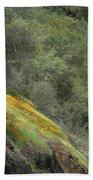 Sierra Poppies Beach Towel