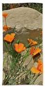 Signs Of Spring Beach Towel