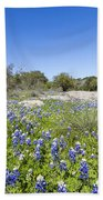Signs Of Spring In Texas Beach Towel