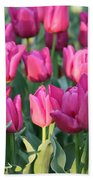Silky Pink Tulips Beach Towel