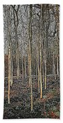 Silver Birch Winter Garden Beach Towel