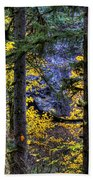 Silver Falls State Park Oregon 2 Beach Towel