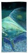 Silver Fish Beach Sheet