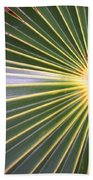 Silver Palm  Beach Towel