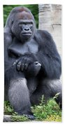 Silverback Gorilla Beach Towel