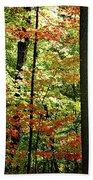 Simply Autumn Beach Towel