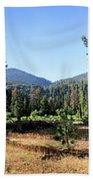 Simpson Meadow - Sierra Beach Towel