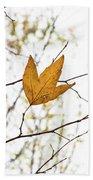 Single Leaf In Fall Beach Towel