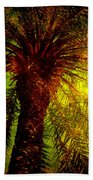 Single Palm Beach Towel