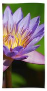 Single Purple Water Lily Number One Beach Towel