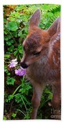 Sitka Black-tailed Fawn Beach Towel