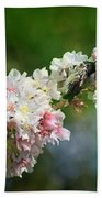 Sitting Guard In The Cherry Blossoms Beach Towel