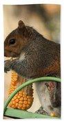 Sitting Squirrel Beach Towel