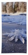 Siuronkoski Roses Beach Towel