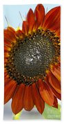 Sizzling Hot Sun Flower Beach Towel