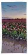Skagit Valley Tulip Reflections Beach Towel