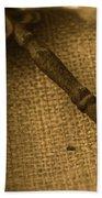 Skeleton Key Beach Towel by Ann E Robson