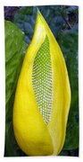Skunk Cabbage Beach Towel