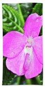 Sky Flower In Huntington Botanical Gardens In San Marino-california  Beach Sheet