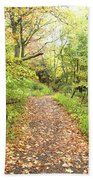 Skylands Trail H Beach Towel