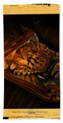 Sleeping Cat Digital Painting Beach Towel