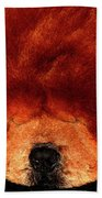 Sleeping Chow Chow Beach Towel