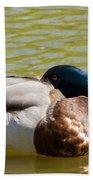 Sleeping Duck On Pond Beach Towel