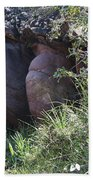 Sleeping In The Jungle - Stone Face In Forest Beach Towel
