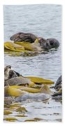 Sleeping Otters Beach Towel