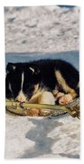 Sleeping Puppy Beach Towel