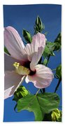 Sleepy Hibiscus Beach Towel