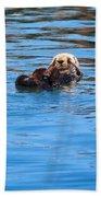 Sleepy Otter Beach Towel