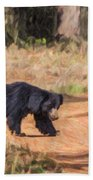 Sloth Bear Melursus Ursinus Beach Towel