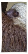 Sloth Beach Towel