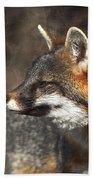 Sly As A Fox Beach Towel