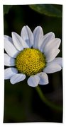 Small Daisy Beach Towel