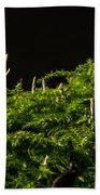 Small Forest Beach Towel