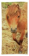 Small Horse Large Beauty Beach Towel