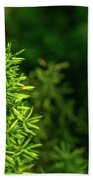 Small Plants Beach Towel